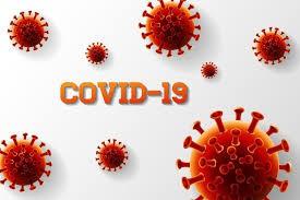 COVID-19 Notifications