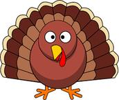 Turkey Tom's