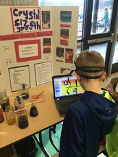 Davis Elementary School Science Fair