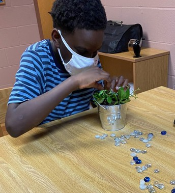 Student placing items in his plant pot
