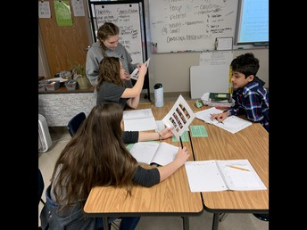 Students discussing their observations on a chick developing