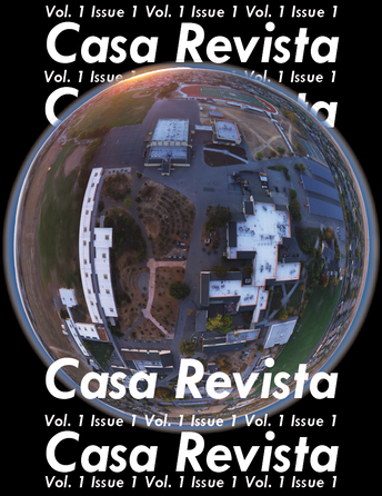 The Casa Revista Needs Your Support!