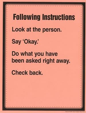 Following Instructions