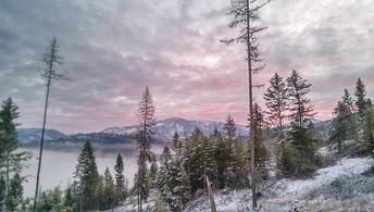 mountain and fog scenery