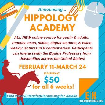 Horse - New Hippology Online Short Course