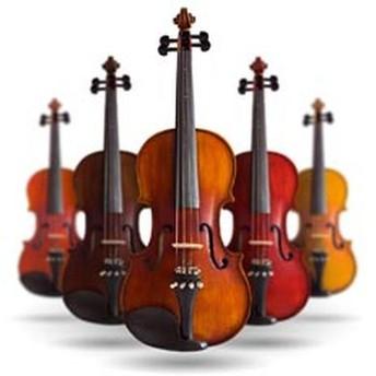 Audicions violí GP