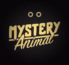 Google Mystery Animal