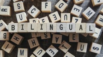 Dual-Language Instruction