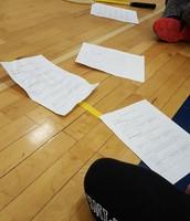 Badminton statistics