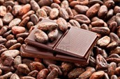 Numerous calories are here in cocoa beans