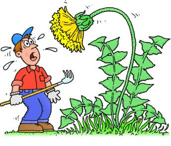 Let's Win Against the Weeds!