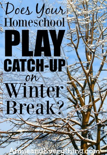 WInter Break Homeschooling