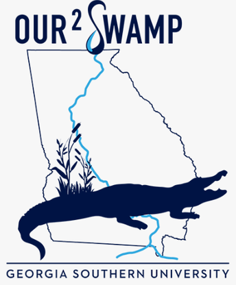 Our2Swamp