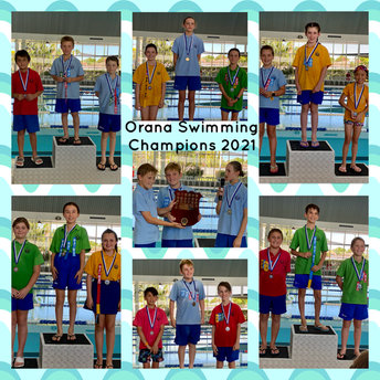 Swimming Carnival News