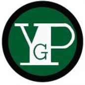 Dane County Youth Governance Program