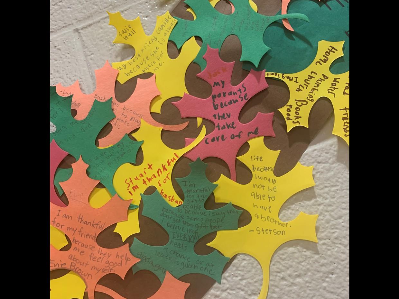 leaves on gratitude tree