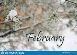 Whoa! February is in the books - bring on March 2020!