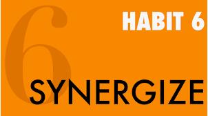 """Habit # 6 """"Synergize"""""""