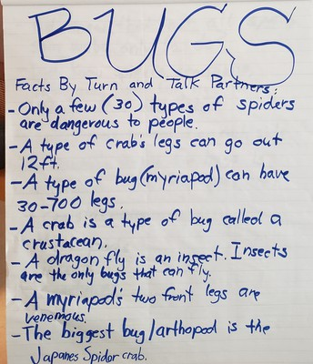 Our First STWEAM Topic- BUGS