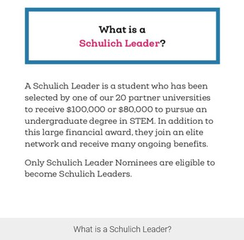 What is a Schulich Leader?
