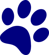 OVES Students Wrap Up a Successful Year with the PAWS Program