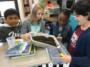 Water Erosion Investigation