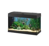 Aquariums Needed