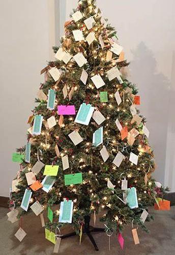 Shumway Giving Tree