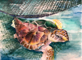 2021 Saving Endangered Species Youth Art Contest