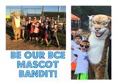 Bandit the Bobcat Mascot