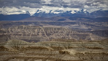 Zanda Earth Forest, Tibet, China