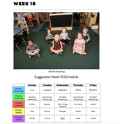 Mindful Classrooms--Week 16