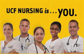 What is the Burnett Honors Nursing Scholar Program?