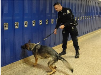 K-9 Unit Sniffing Students' Lockers