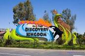 Discovery Kingdom Trip