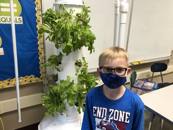Student standing by tower garden
