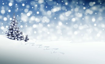 7 Days of Winter