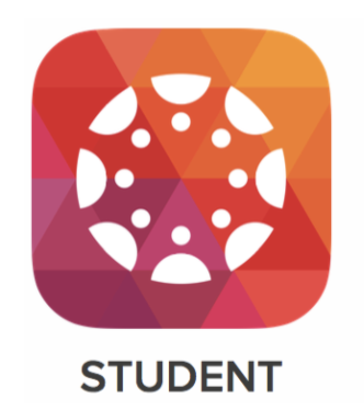 Students check the resource for step-by-step guide to help solve your Canvas issues.