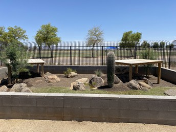 Legacy Community Orchard/Wellness Desert Habitat Update