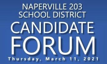 Naperville 203 School Board Voter Guide
