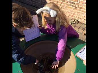 Students Explore Outside Using 5 Senses!