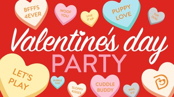 Valentine Parties - February 11th