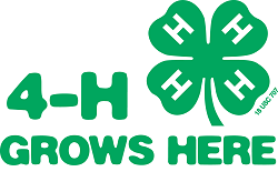 What Is 4-H Project Green Teacher