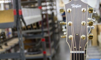 Taylor Guitar Factory Tour