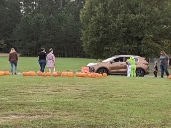 Drive Thru Pumpkin Patch