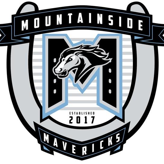 Mountainside High School profile pic