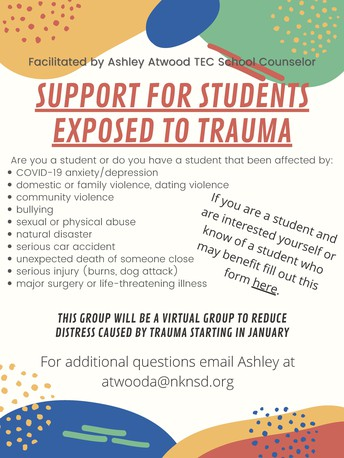 Trauma Support Group for Students