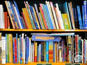 Whitestone Library