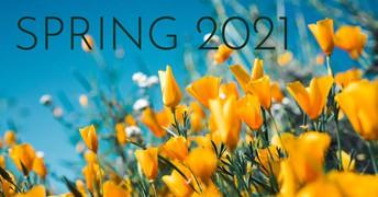 Spring 2021 General Body Meetings