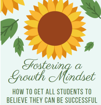 Fostering a Growth Mindset